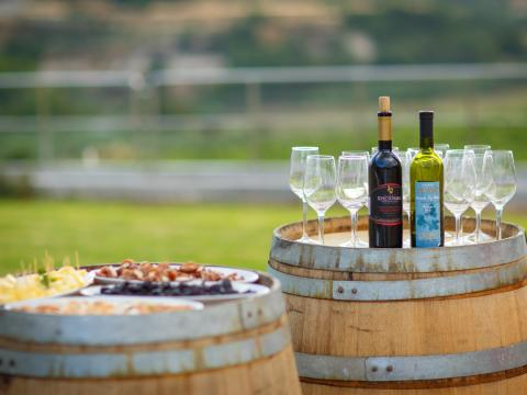 winery party in Cyprus