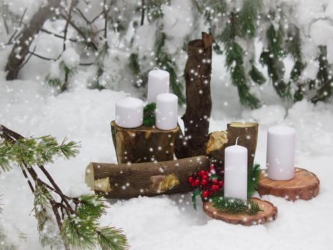 Свадьба на Кипре зимой, зима на Кипре